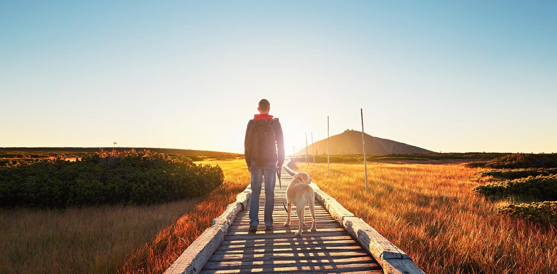 ραντεβού με κάποιον με διπολική διαταραχή 2 Προσφορές αναμονής και γνωριμιών